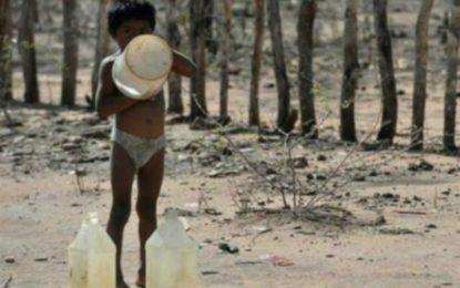 Bebé wayúu murió por desnutrición en Barranquilla