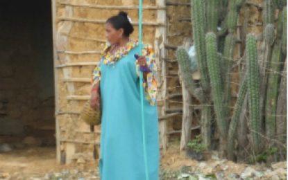Sector ambiente participó en feria de servicio al ciudadano en Manaure, La Guajira