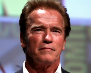 Subastarán autógrafo de Schwarzenegger para salvar tortugas marinas