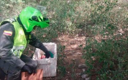 Buscan madre que dejó abandonado a un bebe en una nevera de icopor en La Guajira