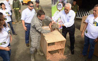 Corporación autónoma de Cali libera 200 animales en Cesar