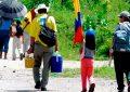 '60 familias se han desplazado por combates en noreste colombiano': ONU