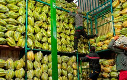 Exportaciones de productos agropecuarios crecieron en mayo