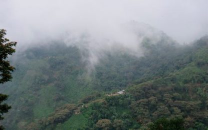 La Sierra Nevada de Santa Marta en peligro de muerte