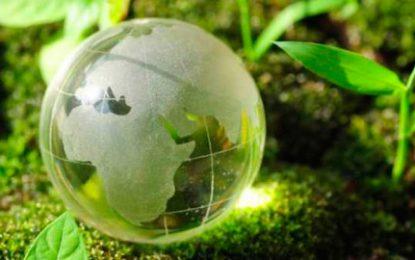 Los negocios verdes impulsan el desarrollo de Colombia