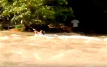 En vídeo: Mujer se aferra a una rama y se salva de ser arrasada por las aguas del Gutapurí