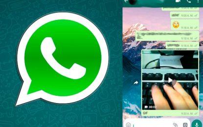 WhatsApp: así podrá crear GIFs personalizados para sus chats