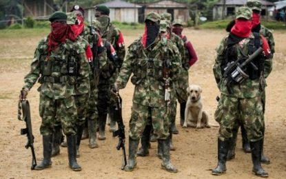 Ejército frustró accionar terrorista que preparaba el ELN en Arauca