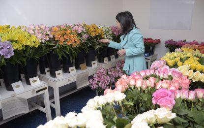 Sector floricultor colombiano exportará 35.000 toneladas a Estados Unidos en San Valentín