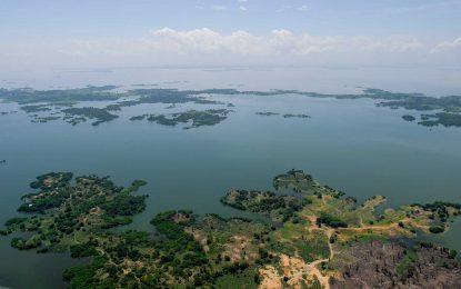 Ciénaga de Zapatosa ingresó a la lista internacional de humedales Ramsar