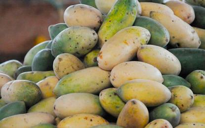 Cáscaras de las frutas tienen propiedades saludables
