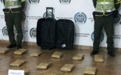 Capturado cuando transportaba 50 kilos de marihuana