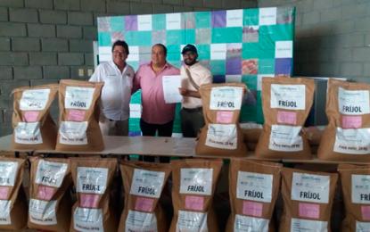 Sale al mercado el primer frijol biofortificado del Cesar