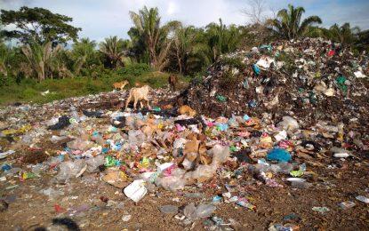 Corpocesar cerró botadero clandestino en Chimichagua por violación a las normas ambientales
