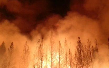 Sube a 66 la cifra de muertos en California por letal incendio; se reportan 630 desaparecidos