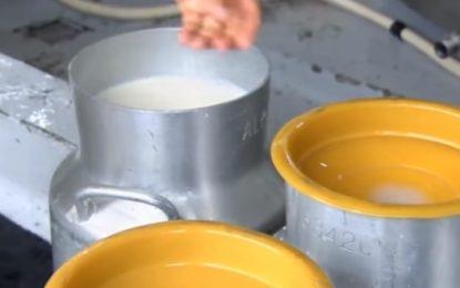 Propuesta de IVA a la leche y sus derivados preocupa a Fedecooleche