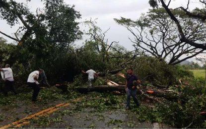 35 vivienda afectadas por vendaval en Chiriguaná, Cesar