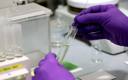 Un antiviral español reduce casi al 100% la carga viral de SARS-Cov-2