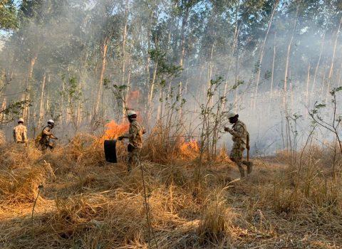 Incendios forestales han acabado con casi 5.000 hectáreas en el Cesar