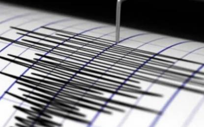 Sismo de magnitud 6.1 sacude las islas Kermadec de Nueva Zelanda