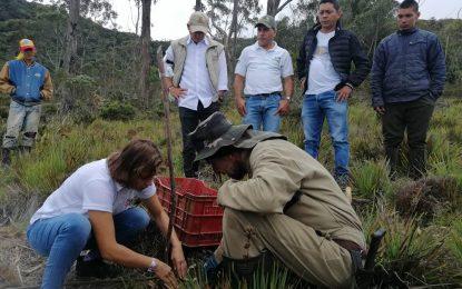 Por conservación de la Serranía del Perijá  50 familias campesinas recibirán pagos