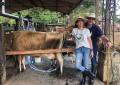 Mauricio Vélez y sus hermanos fueron víctima de hurto en su finca familiar