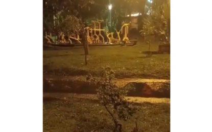 Graban supuesto fenómeno paranormal en parque